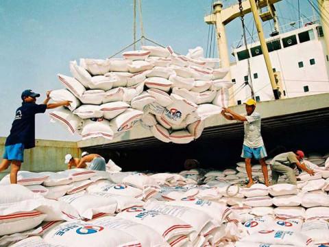 Hiệp hội Lương thực Việt Nam dự báo xuất khẩu gạo trong năm 2021 sẽ tiếp tục khởi sắc