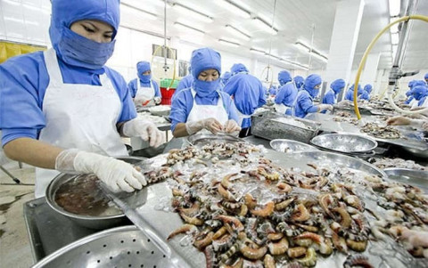 Tăng cường hiệu quả kiểm soát chất lượng, an toàn thực phẩm trong thủy sản