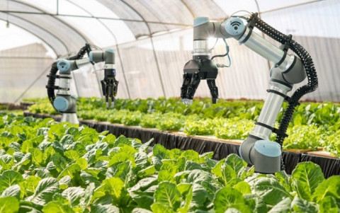 Công nghiệp 4.0 trong phát triển nông nghiệp công nghệ cao giúp nông dân kiểm soát tốt hơn quá trình chăn nuôi, trồng trọt