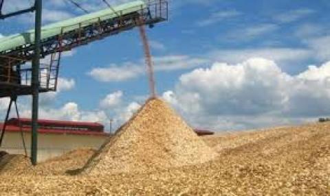 Các doanh nghiệp đề nghị bãi bỏ thuế xuất khẩu dăm gỗ