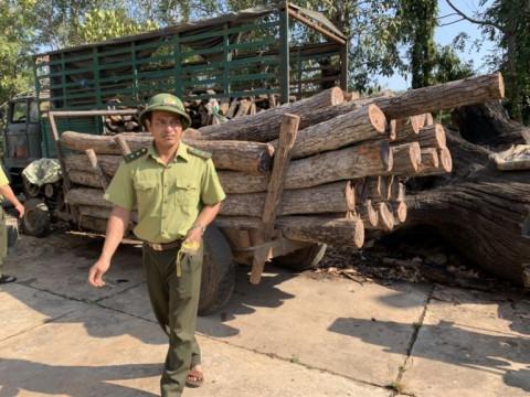 Đắk Lăk: Lâm tặc lại phá rừng Ea Súp