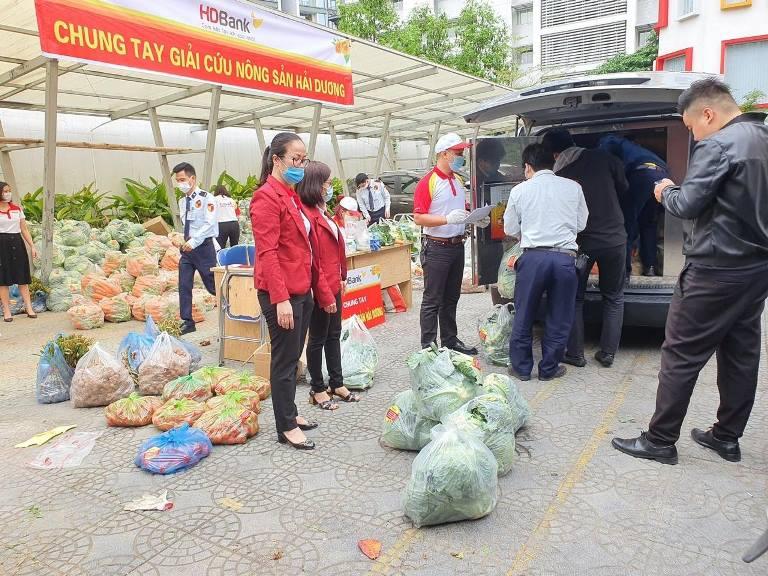 """Công đoàn HDBank khu vực phía Bắc đã tổ chức các """"Chuyến xe yêu thương"""" – triển khai thu mua nông sản cho bà con Hải Dương"""