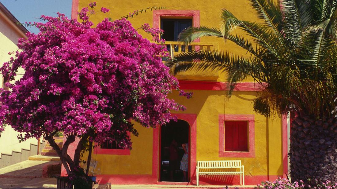 Bên ngoài những ngôi nhà màu hồng, tím và xanh lá cây trên đảo được trang trí bởi những bông hoa giấy rực rỡ