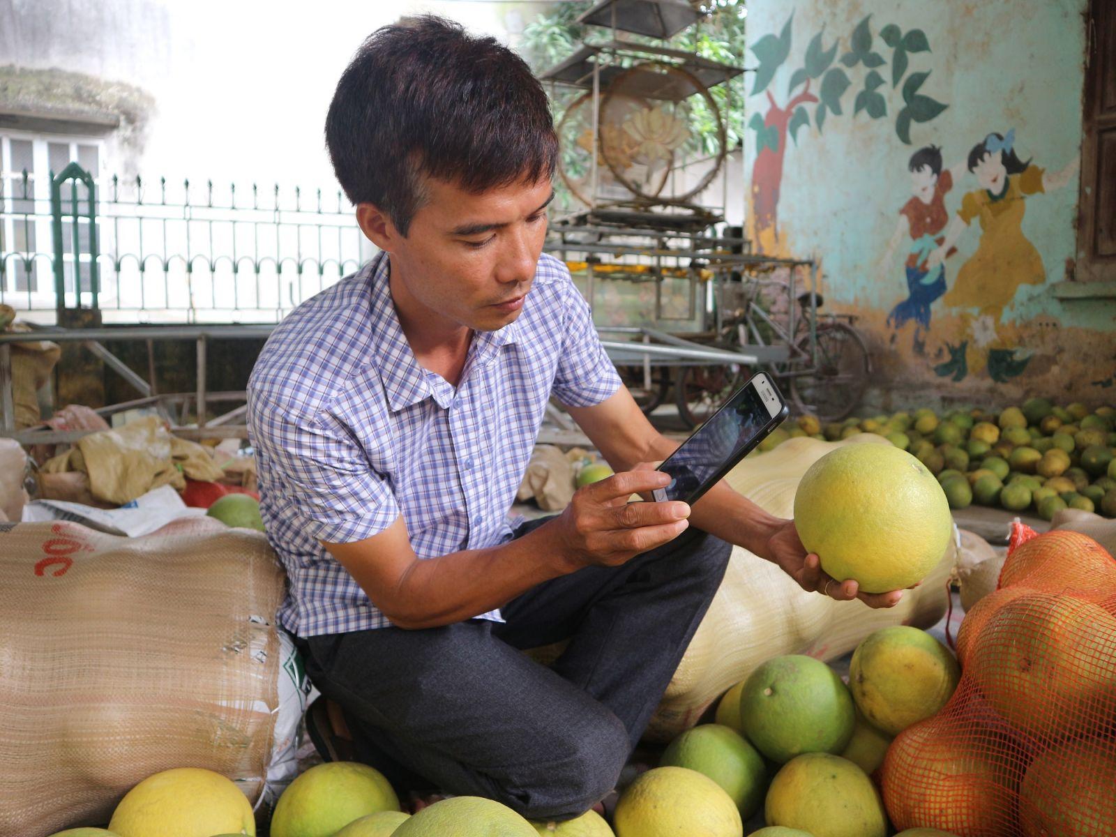 Anh Nguyễn Tuấn Oanh đang quảng bá sản phẩm của HTX trên mạng xã hội