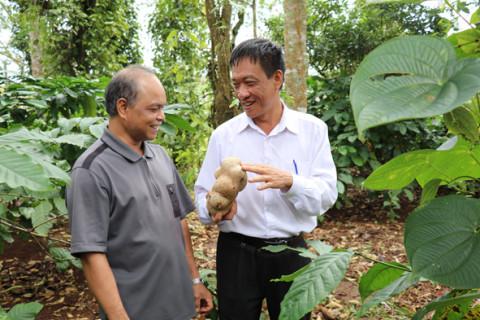 Xã Hòa Đông xây dựng nông thôn mới nâng cao