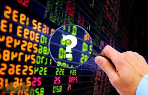 Những cổ phiếu ngành nào mà nhà đầu tư nên nắm giữ trong tháng 3/2021?