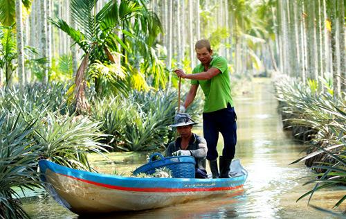 Kiên Giang: Đầu tư 17.400 tỷ đồng xây dựng nông thôn mới