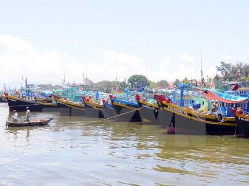 Kiên Giang: Ngăn chặn, xử lý hành vi tổ chức, môi giới đưa tàu cá, ngư dân ra nước ngoài khai thác hải sản trái phép