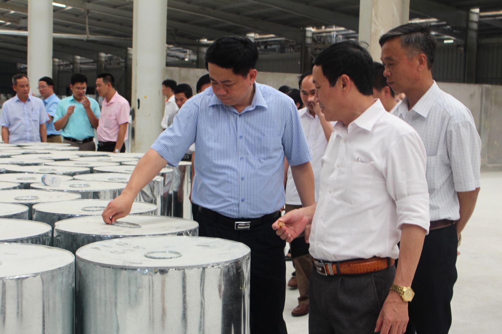 Công ty CP Thông Quảng Ninh trả cổ tức tới trên 46%