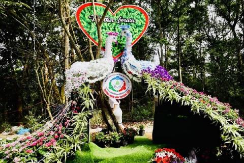 Sầm Sơn (Thanh Hóa): Chuẩn bị cho Lễ hội tình yêu - Hòn Trống Mái năm 2021