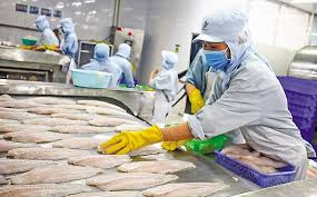 Kiến nghị không phạt chậm nộp thuế VAT khi có hàng xuất khẩu bị trả về