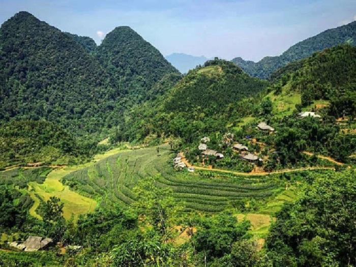 Triển khai thực hiện chính sách chi trả dịch vụ môi trường rừng trên địa bàn tỉnh, kịp thời, đúng đối tượng. Ảnh: Internet