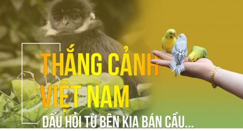 Thắng cảnh Việt Nam, dấu hỏi từ bên kia bán cầu....