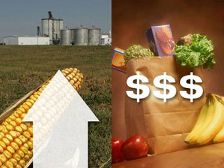 Giá lương thực toàn cầu tăng cao, ngân hàng trung ương ở các thị trường mới nổi buộc phải tăng lãi suất
