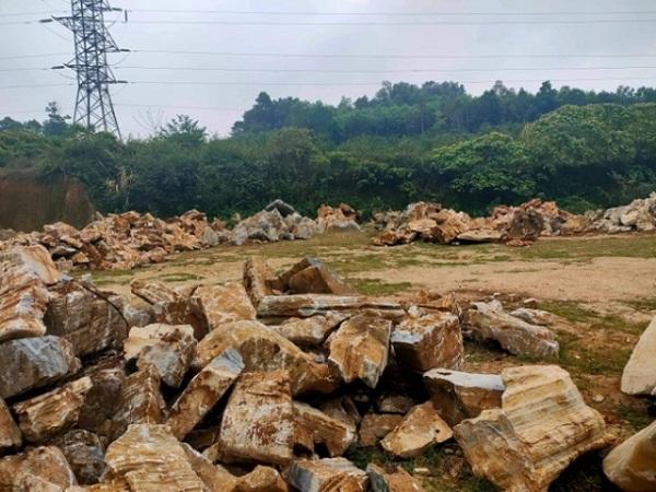 Nghệ An: Truy tìm chủ nhân hàng trăm khối đá cảnh tập kết trên vùng đất của Công ty Xuân Thành quản lý sử dụng