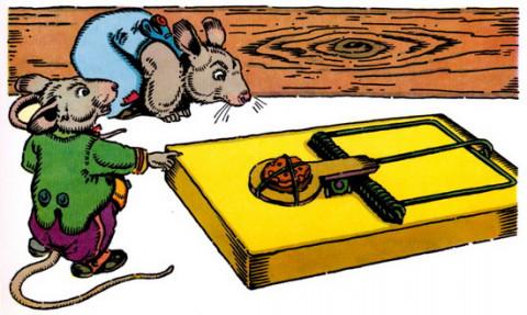 Diệt chuột, có cần chi tiền tỷ từ ngân sách?