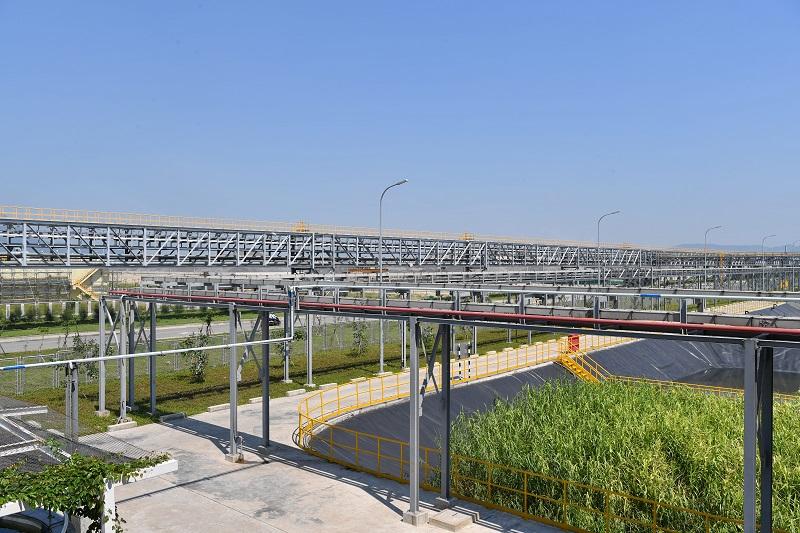 Gang thép Hưng Nghiệp Formosa Hà Tĩnh phủ xanh 150 ha khuôn viên