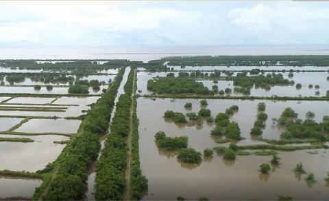Chính quyền Vân Đồn sẽ thu hồi đất nông nghiệp bỏ hoang của người ngoại tỉnh