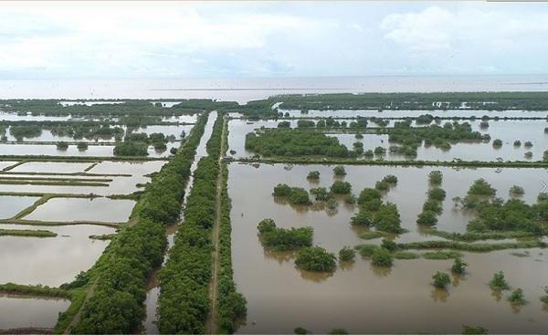 Đất nông nghiệp mà không trực tiếp sản xuất nông nghiệp thì UBND các xã, thị trấn kiểm tra, lập thủ tục báo cáo UBND huyện Vân Đồn ra quyết định thu hồi