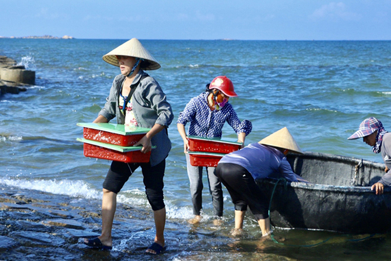 Thủy hải sản Hà Tĩnh đắt khách, doanh nghiệp nhiều cơ hội