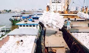 Xuất khẩu gạo giảm 30,4% trong quý I?