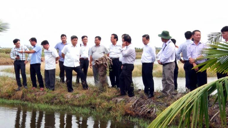Xây dựng, nhân rộng mô hình sản xuất lúa - tôm hữu cơ tại Kiên Giang