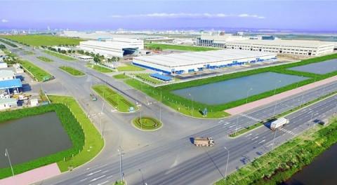 Chuyển đổi 360,5ha rừng trồng để thực hiện Dự án Khu công nghiệp đa ngành Triệu Phú