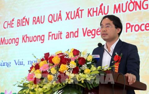 Lào Cai: Khánh thành Nhà máy Chế biến rau quả xuất khẩu Mường Khương
