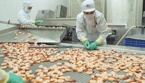 Việt Nam lọt top 4 nhà cung ứng tôm tại Mỹ