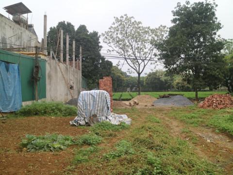 Kiến nghị thu hồi đất đối với dự án của Công ty TNHH MTV Đầu tư và Phát triển nông nghiệp Hà Nội là có cơ sở