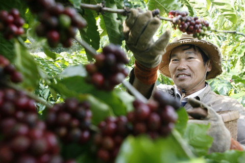 Sau khi EVFTA có hiệu lực, Việt Nam xuất khẩu 4,8 tỷ USD hàng hóa vào EU