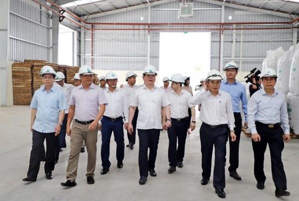 Chủ tịch tỉnh Nghệ An kiểm tra tình hình sản xuất tại Nhà máy chất đốt sinh khối dạng viên nén ở Thanh Chương