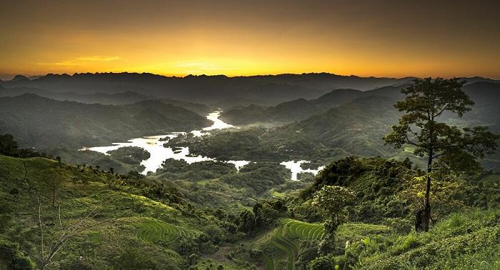 hiện diện tích rừng cả nước chủ yếu tập trung ở địa bàn vùng đồng bào dân tộc thiểu số, miền núi, khu vực biên giới, rừng đầu nguồn lưu vực các con sông, suối lớn.