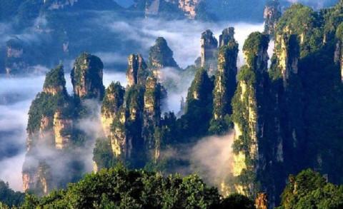 Hệ sinh thái của Trái Đất với 3 % diện tích còn nguyên vẹn