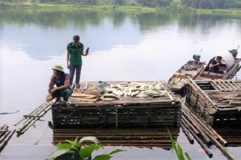 UBND tỉnh Thanh Hóa: Đình chỉ hoạt động sản xuất giấy vàng mã và bột giấy của một doanh nghiệp