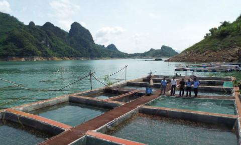 Hòa Bình: Phát triển kinh tế vùng hồ gắn với du lịch cộng đồng và nuôi trồng thủy sản