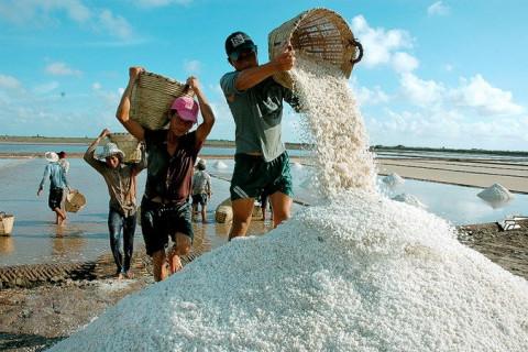 Hà Tĩnh muốn thêm thời gian nhận muối trắng hỗ trợ vùng ngập lụt