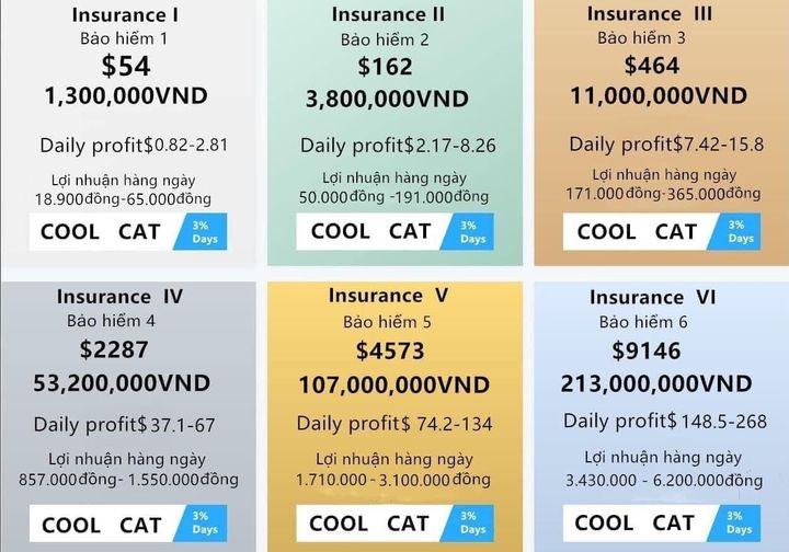 Các gói bảo hiểm vốn của Coolcat