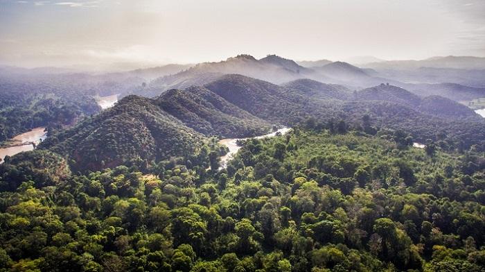 Dự án Rừng và Đồng bằng Việt Nam là chương trình hợp tác về biến đổi khí hậu đầu tiên giữa USAID và Chính phủ Việt Nam. Ảnh: Internet