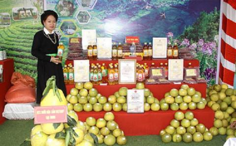 Chương trình OCOP tạo sức bật cho cho nông nghiệp, nông thôn và nông dân tỉnh Yên Bái