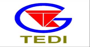 TEDI bị xử phạt 450 triệu vì hàng loạt lỗi vi phạm