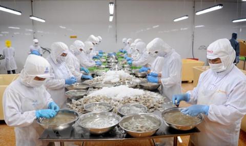 Nâng tầm thương hiệu tôm Cà Mau, đẩy mạnh thị trường xuất khẩu