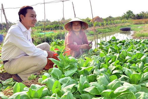 Nhờ vay được vốn Quỹ HTND, nhiều nông dân tỉnh Kiên Giang vươn lên khấm khá