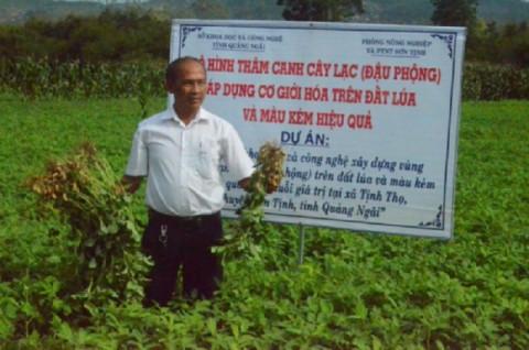 Thâm canh lạc trên đất màu kém hiệu quả tại Quảng Ngãi