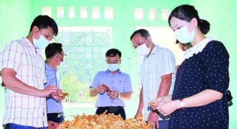 Thanh Hóa: Xây dựng thương hiệu măng khô xã Thanh Lâm