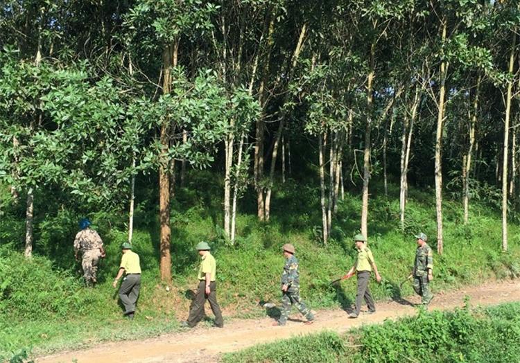 Lực lượng kiểm lâm của huyện tuần tra bảo vệ rừng