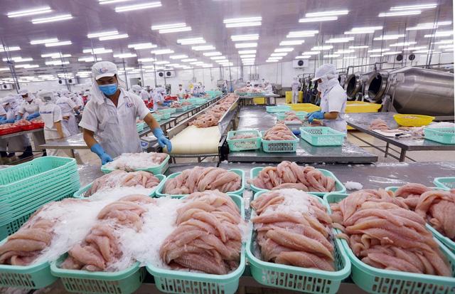 Cảng Trạm Giang (Quảng Đông, Trung Quốc) tạm dừng nhập khẩu thực phẩm đông lạnh từ Việt Nam