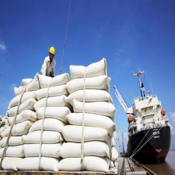 Xuất khẩu gạo Việt Nam giảm cả về số lượng lẫn giá trị