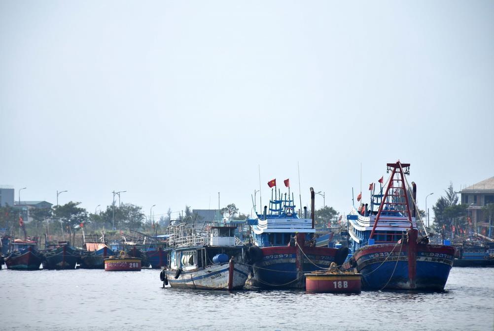 Năng suất của các tàu cá ở tỉnh Kiên Giang tăng trong giai đoạn 2017-2020