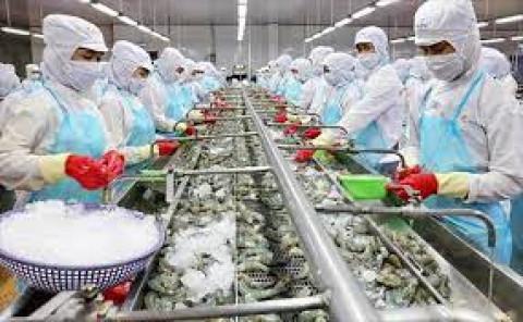 Đồng bằng sông Cửu Long xuất khẩu thủy sản đứng đầu cả nước